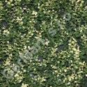 PREMIUM TILE 50 (rôzne rastliny, stavebnica)